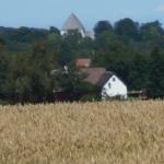 Hyggelig ejendom på Bornholm som i 47 år er 100% dyrket efter økologiske principper - en Land-,have-og skov-ejendom med 3 skovstykker og uden bopælspligt på Bornholm
